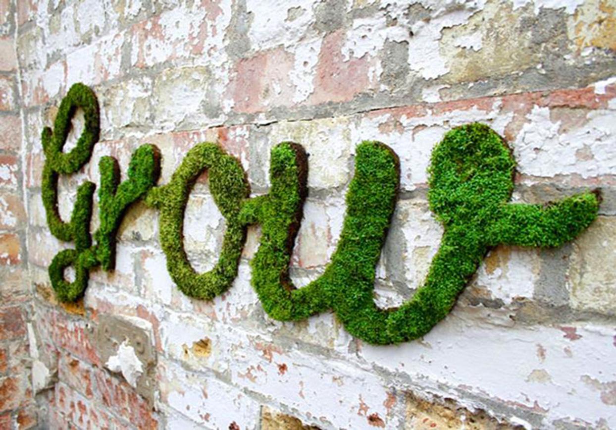 Надпись декоративный мох