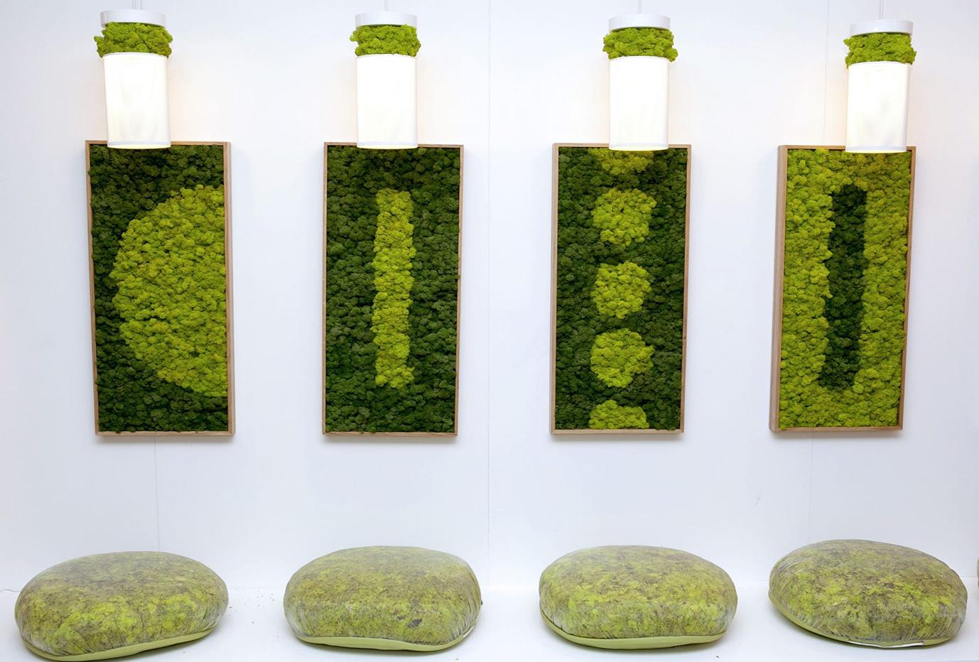 Декоративный мох фото